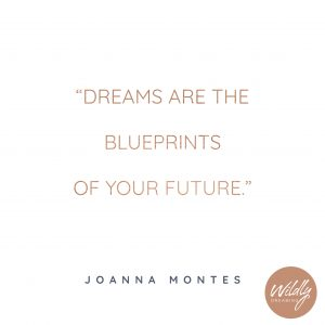 Dreams are the Blueprints of your Future - Wildly Dreaming